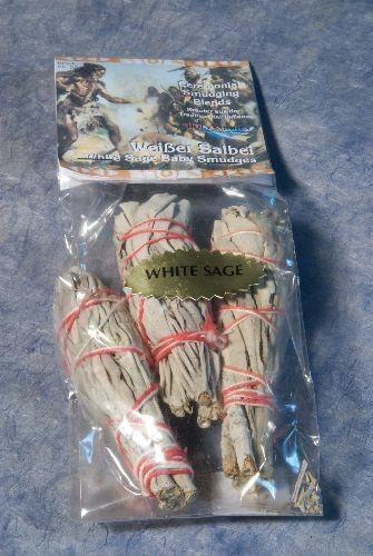 Weißer Salbei 3 Baby Smudges