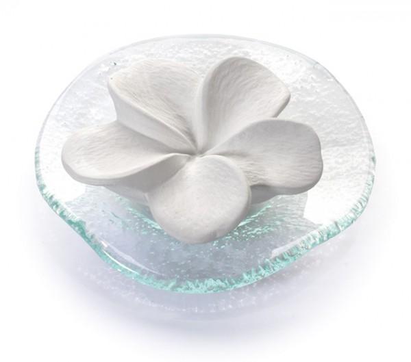 Duftstein Frangipani auf Glasteller transparent