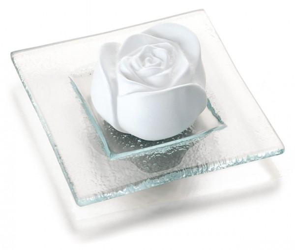 Duftstein Rosenblüte auf Glasteller transparent