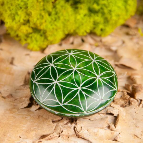 Handschmeichler Lebensblume, grün